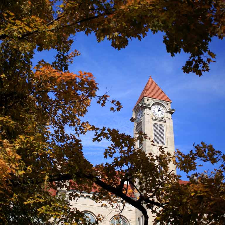 a view of the clock tower through tree branches on a sunny autumn day